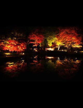 土岐市紅葉スポット曽木公園で逆さ紅葉!美味しい屋台も♪
