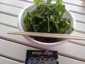 多治見の虎渓用水広場・たじみ河川敷サンデーマーケット~7月3日開催~